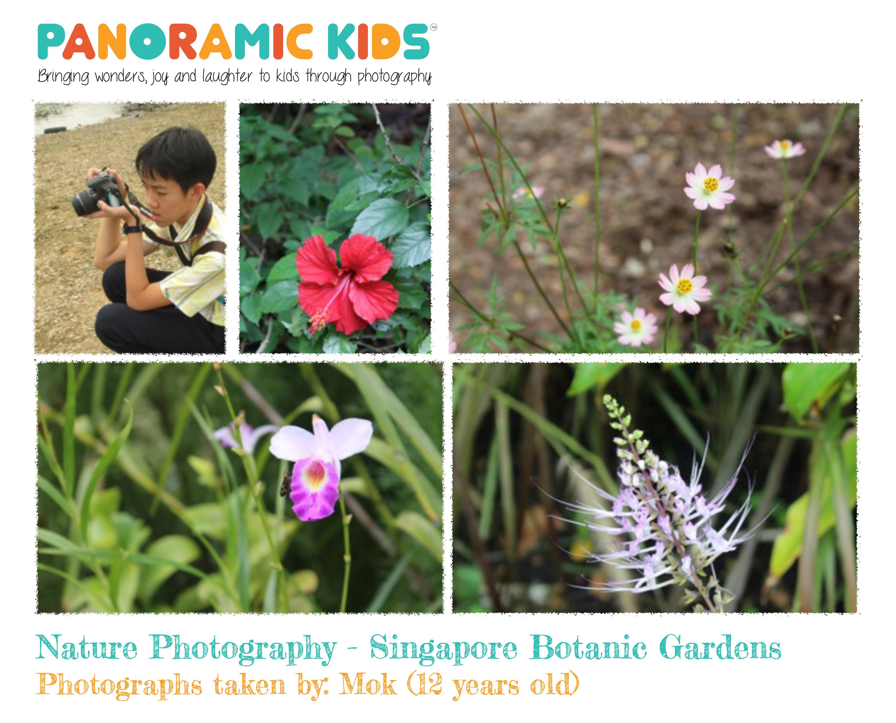 8Sept2015_NaturePhotographyShowcase