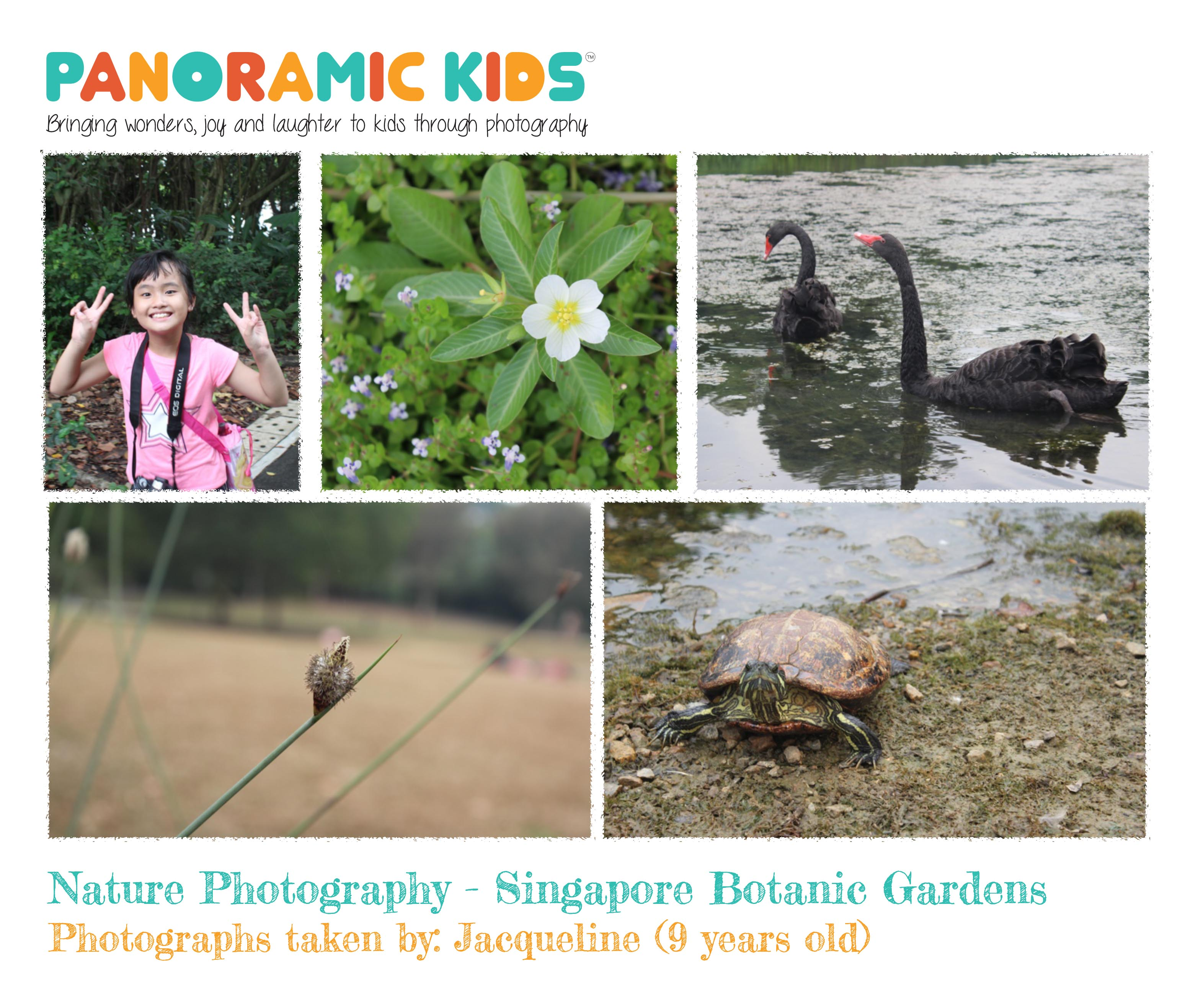 8Sept2015_NaturePhotographyShowcase